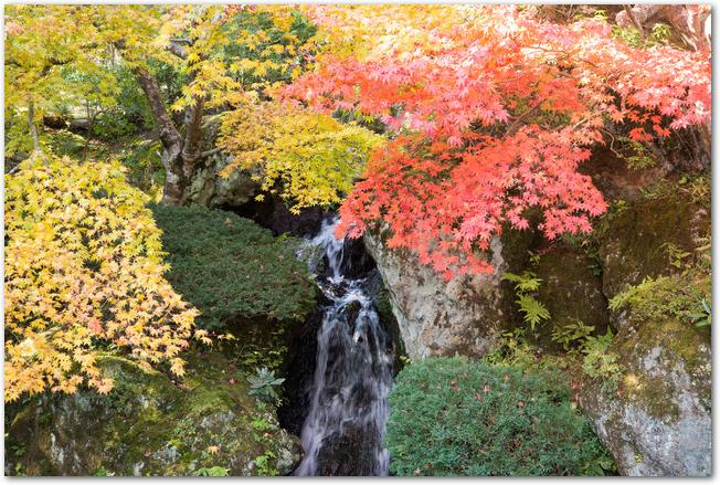 箱根美術館の庭園にある滝と紅葉