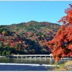 嵐山の紅葉はいつが見ごろ?混むの?おすすめルートは?
