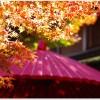 箱根の紅葉見頃の時期は?おすすめスポットは?混雑は?