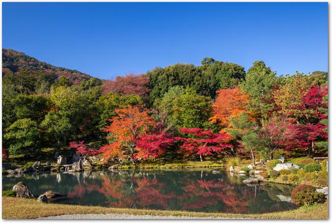 天龍寺の池と紅葉の様子