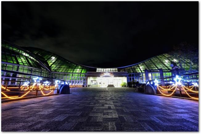 京都府立植物園のイルミネーションの様子