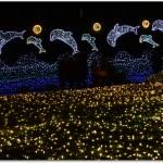 江ノ島イルミネーション開催期間は?クリスマスは?駐車場はある?