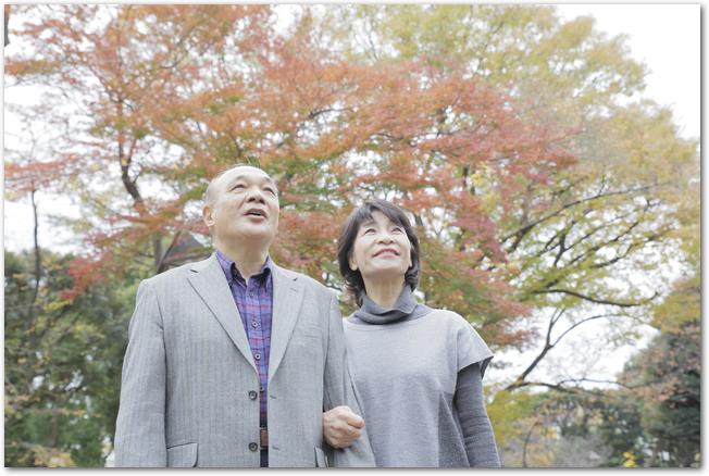 紅葉狩りをするシニア夫婦の様子