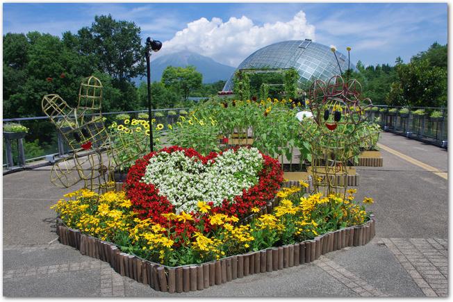 鳥取花回廊の花壇とドームの風景