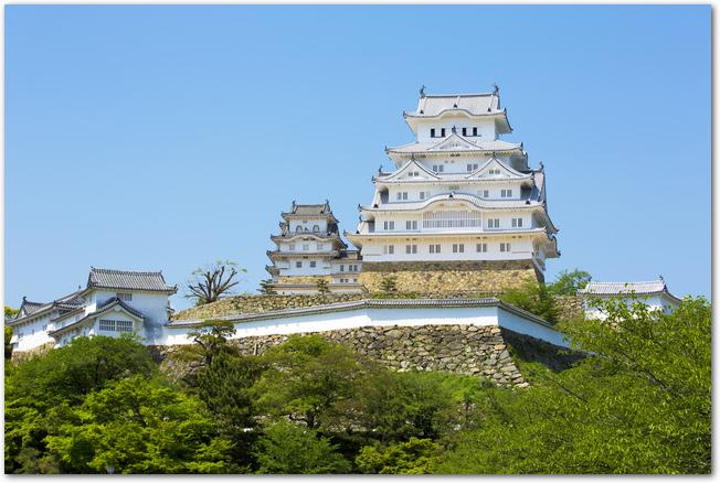 満開の桜と姫路城