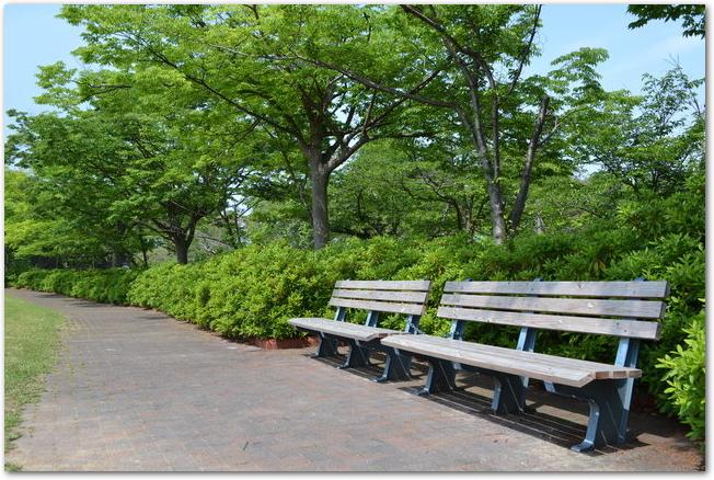 ライラックの咲いている川下公園にある白いベンチ