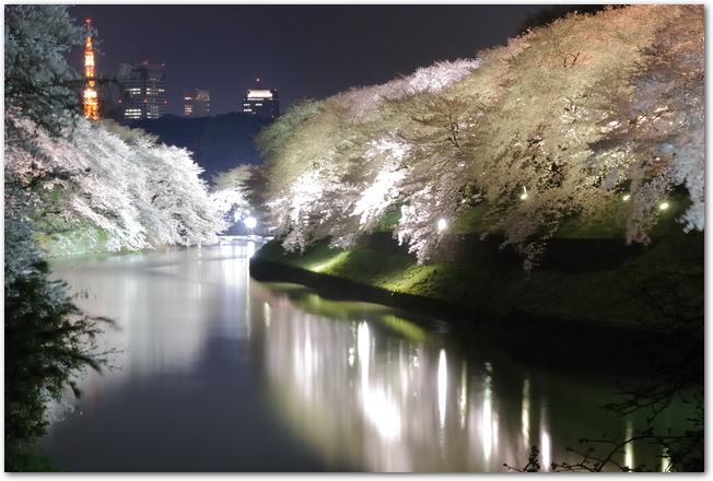 ライトアップされた千鳥ヶ淵と夜桜の様子
