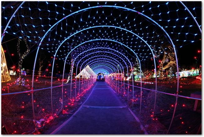 榛名湖イルミネーションの光のトンネル