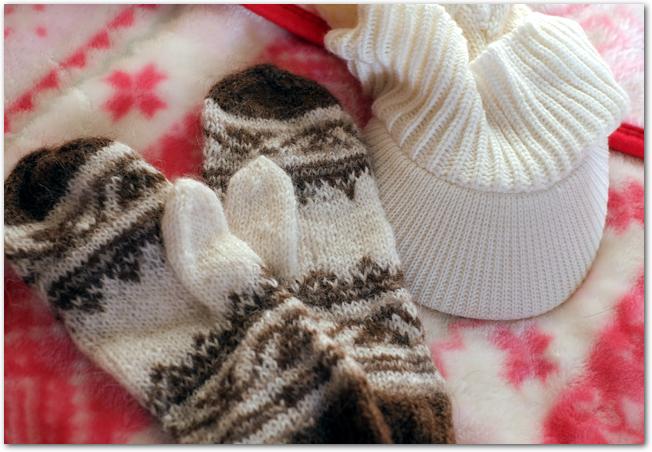 ニット帽や手袋とブランケットなどの防寒グッズ