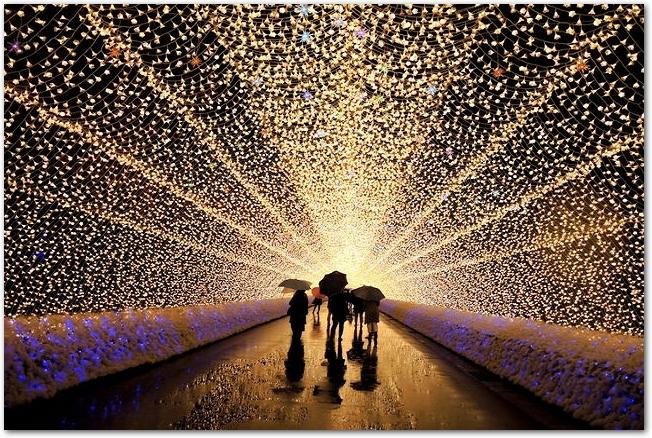 雨傘をさしてなばなの里の光のトンネルを歩く人々