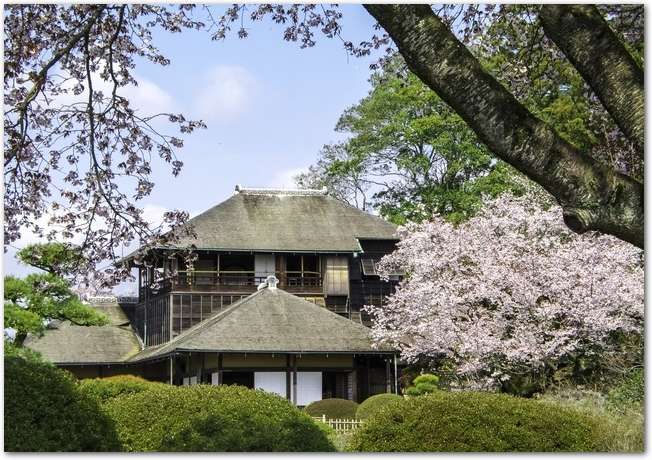 春の晴れた日の偕楽園の好文亭と左近の桜の様子