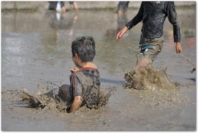 水田で泥だらけになって遊ぶ子どもたちの様子
