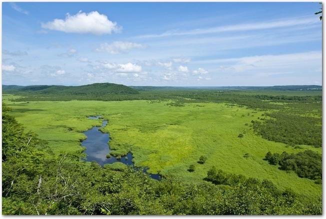 青空の下に広がる緑一面の釧路湿原の光景