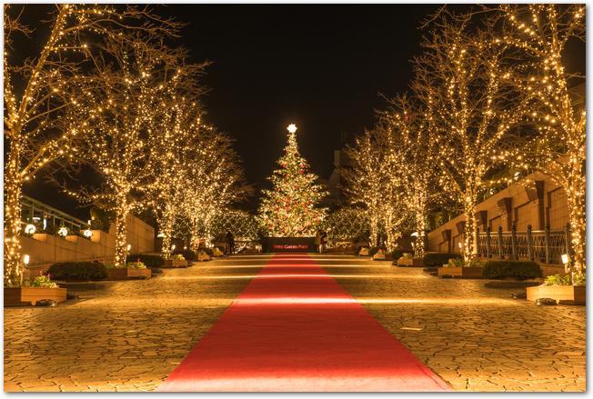 恵比寿ガーデンプレイスの金色にライトアップされた街路樹とクリスマスツリー