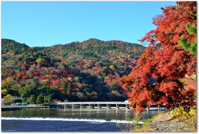 京都嵐山の渡月橋と紅葉の風景