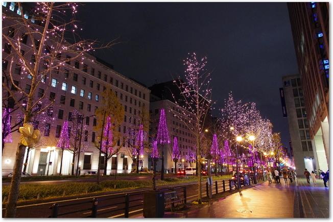 御堂筋のピンクにライトアップされた街路樹