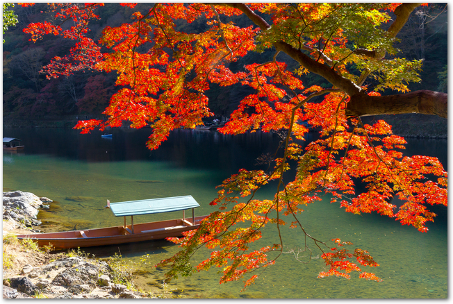 秋の嵐山の紅葉と保津川に浮かぶ船の様子