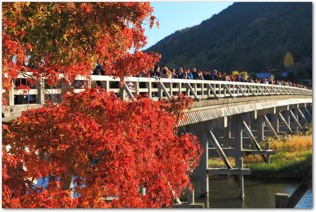 秋の渡月橋を渡るたくさんの人々の様子