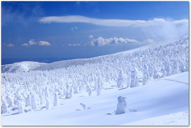 青空の下そびえたつ蔵王の樹氷の様子