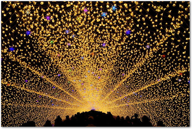 なばなの里の光の回廊イルミナーションの様子