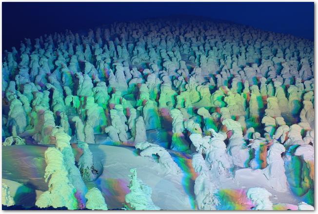 ライトアップされた樹氷の様子