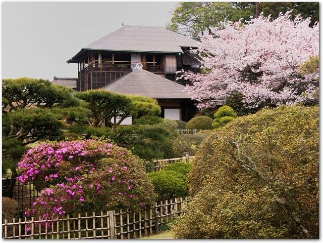 三戸偕楽園の好文亭と梅の花が咲いている日本庭園