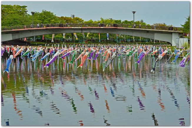 こいのぼりの里まつり開催中のたくさんのこいのぼりが泳ぐ鶴生田川の風景