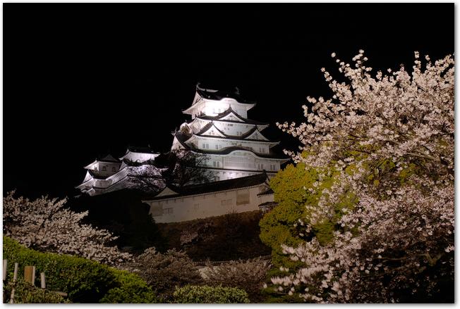 姫路城で開催される夜桜会の様子