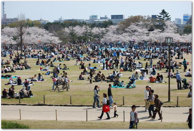 姫路城の三の丸広場でお花見をする人々の様子