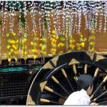 京都の葵祭のコースは?おすすめ見物場所は?アクセスは?
