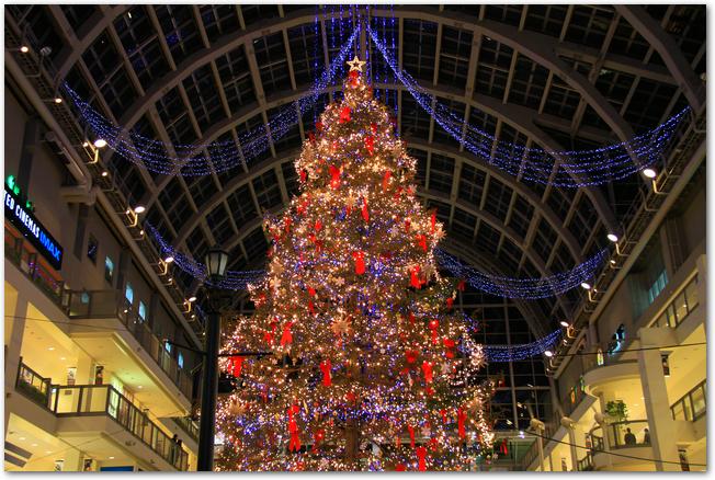 サッポロファクトリーの中にあるクリスマスツリー