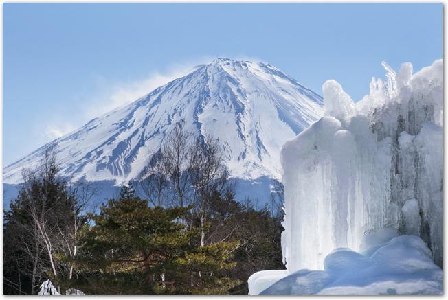 西湖樹氷まつりの樹氷と富士山