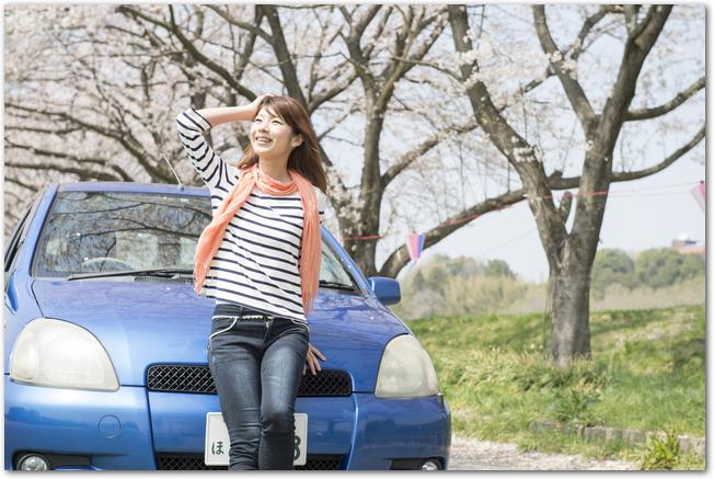 車の正面に腰かけて桜を見上げる女性の様子