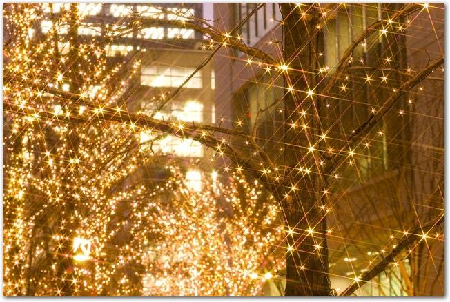 シャンパンゴールドのイルミネーションに彩られた丸の内の街路樹