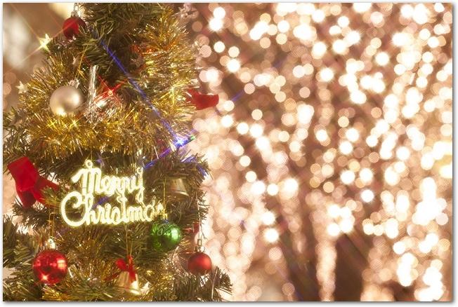 ライトアップされた街路樹とクリスマスツリーの様子