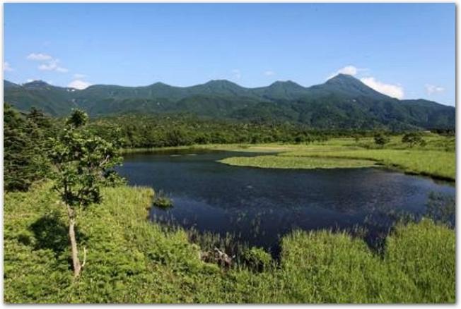 湖と緑豊かな知床の風景