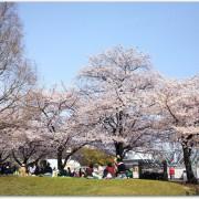 万博公園でお花見をしたい!場所取りはした方がいい?混雑状況は?おすすめの時間帯は?